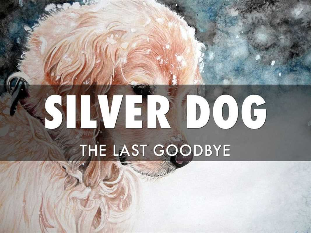 SILVER DOG THE LAST GOODBYE