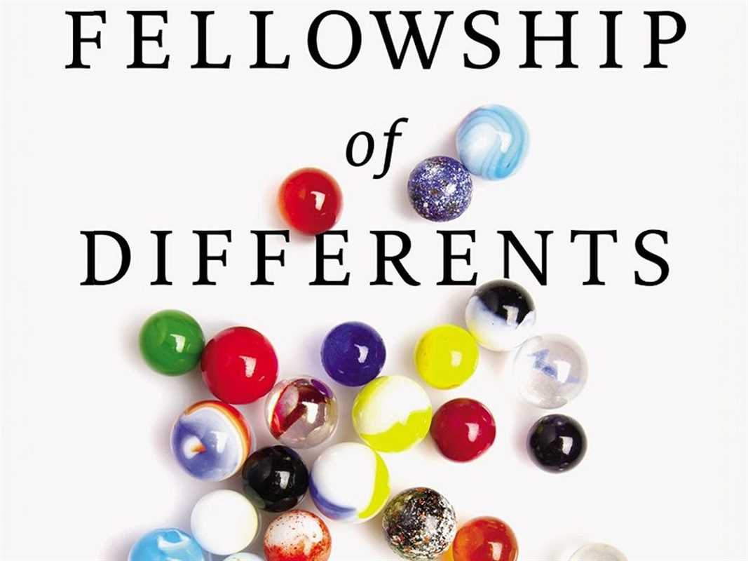 Fellowship of differents3