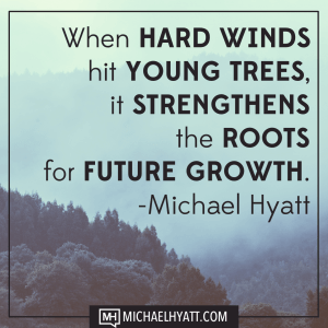 hard-winds-young-trees